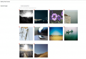 Share gallery format 1